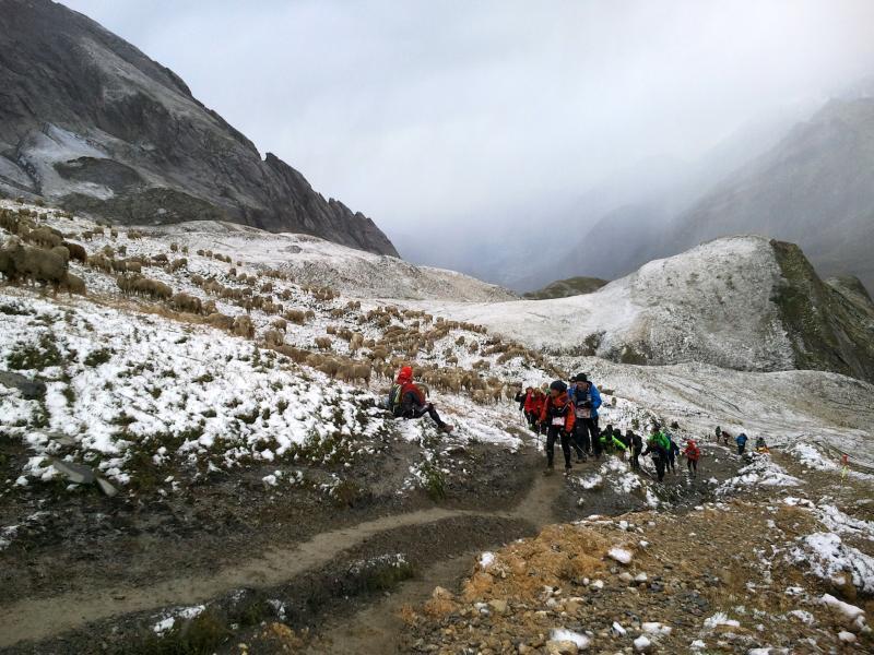 Ultra-Trail du Mont-Blanc 2011